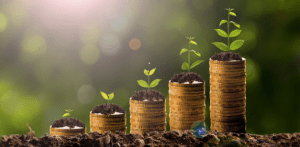 Watch your money grow with these four tips.
