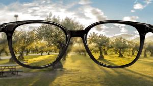 vision awareness