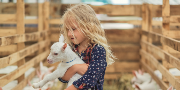 Farm-fair-animals-kid-child-girl-daughter-outside-pets-canva photo-can reuse