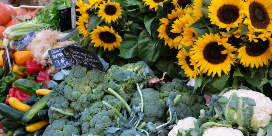 farmers market-fall-food-produce-canva photo-can reuse